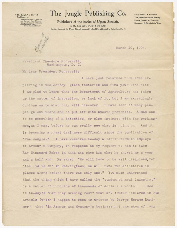 Theodore roosevelt research paper