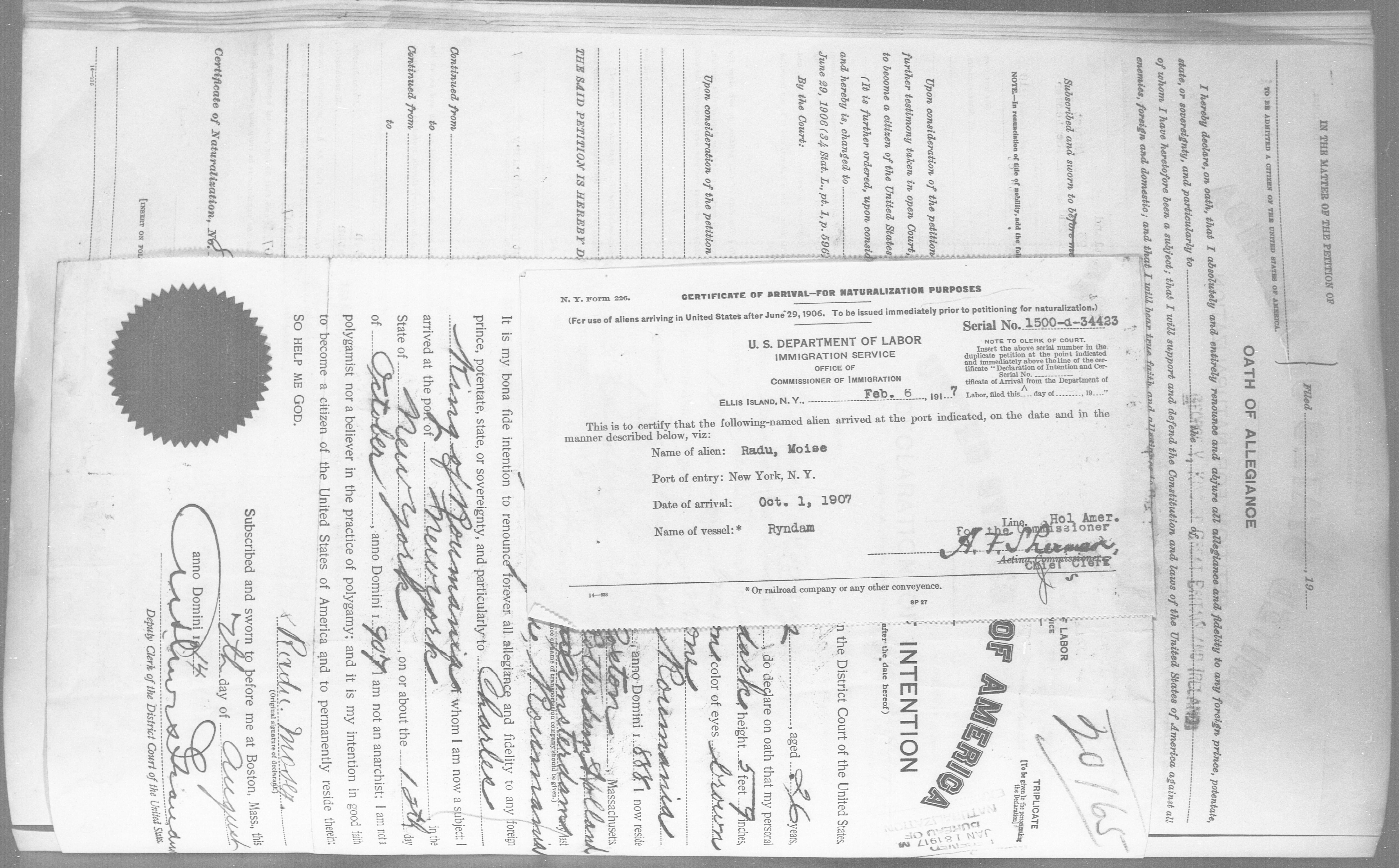 Petition for Naturalization of Radu, Moise