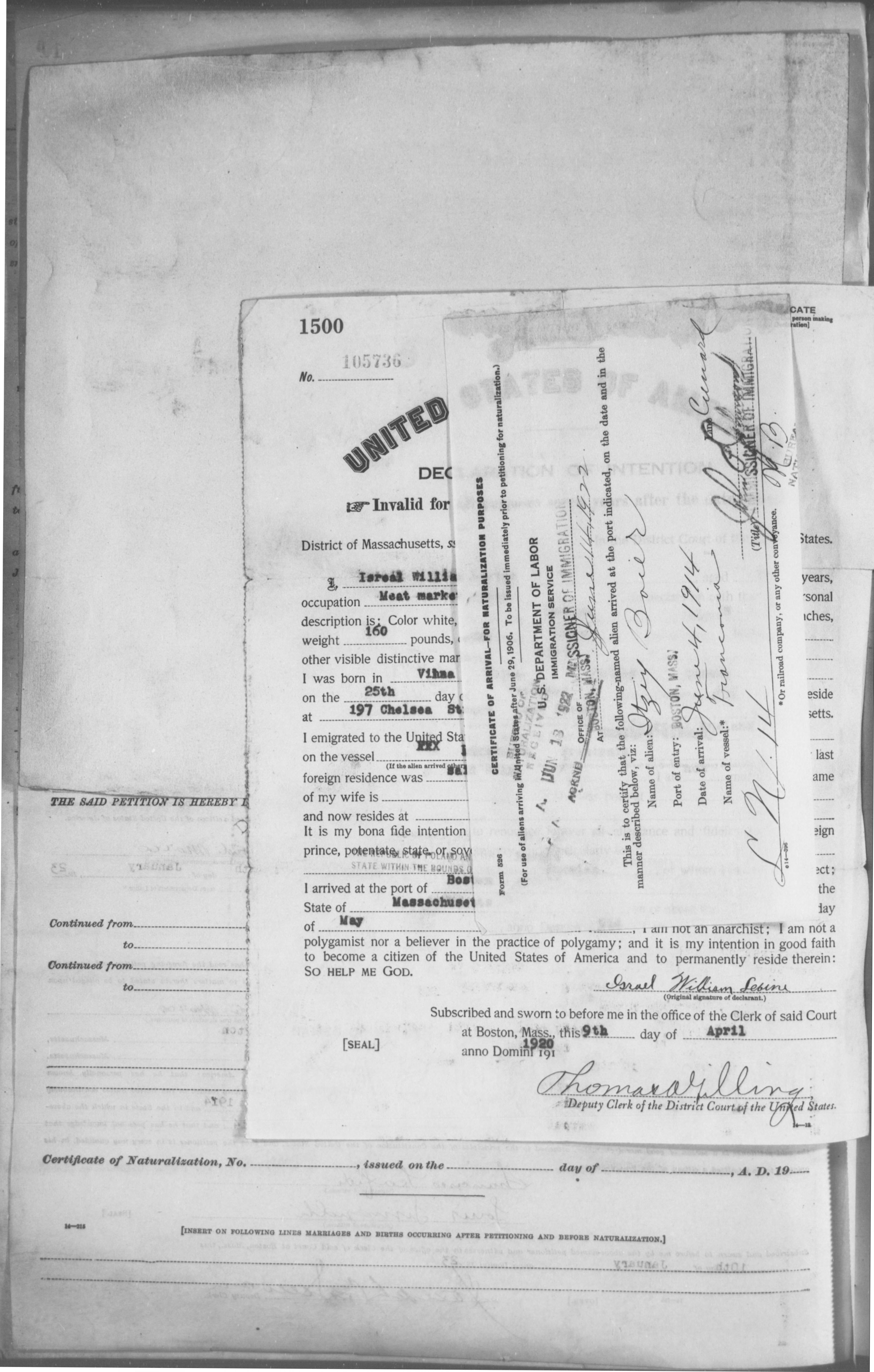 Petition for Naturalization of Itzy Boier